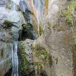 Orokawa Bay to William Wright Falls